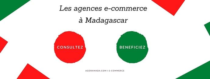 Les agences e-commerce à Madagascar